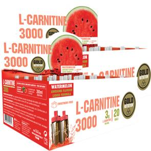Pack 2 L-Carnitina 3000 GoldNutrition - 18,99€ CADA
